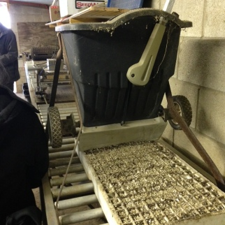vermiculite for topping seed trays